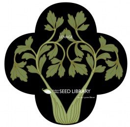 Lovage-front