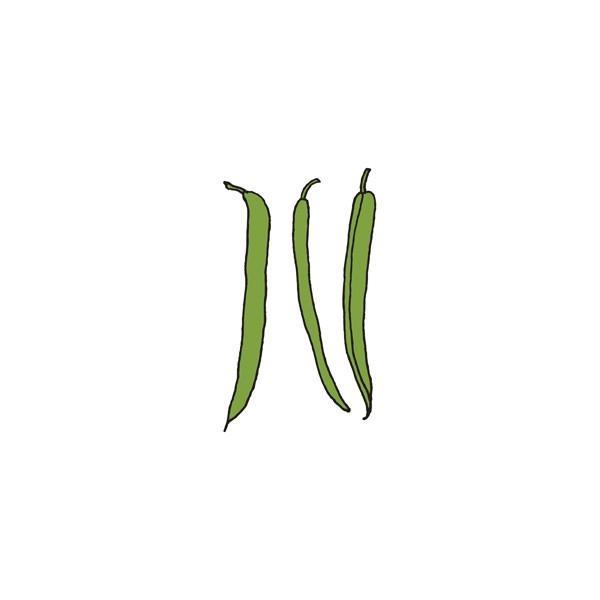 tattly_julia_rothman_beans_web_design_01_grande